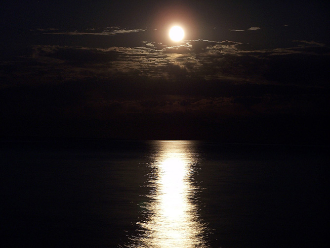 Moonlight reflected by a lake.