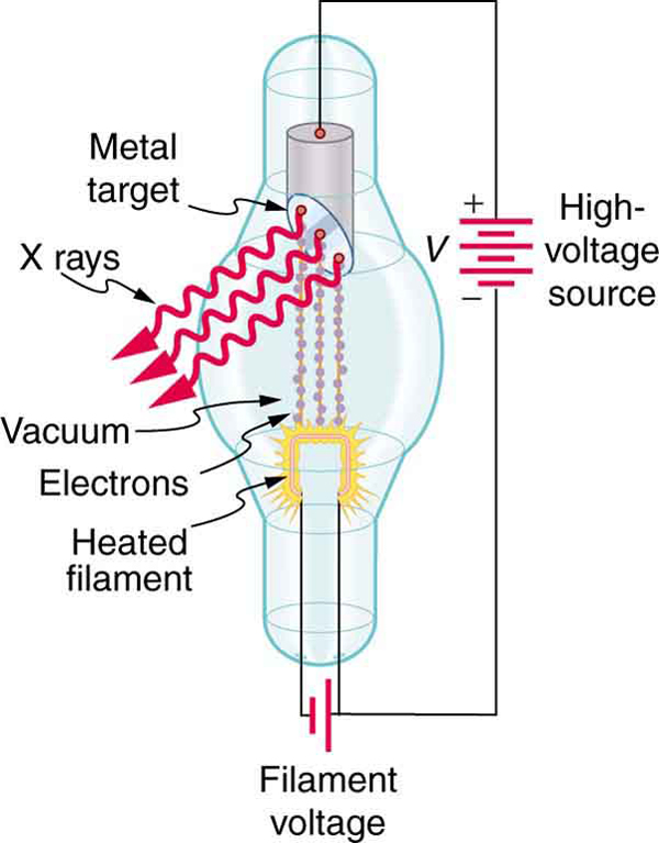 X rays are produced when energetic electrons strike the copper anode of this cathode ray tube (CRT). Electrons (shown here as separate particles) interact individually with the material they strike, sometimes producing photons of EM radiation.