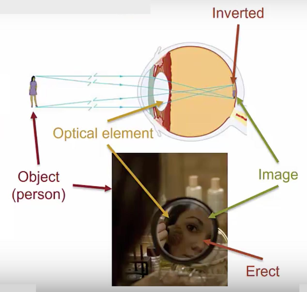 Optical Element